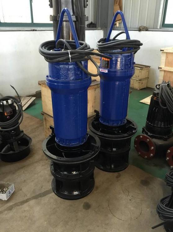 立式轴流泵